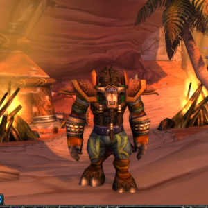 Earthfury PvP - 60 Tauren male Druid [safe account by metammo team]