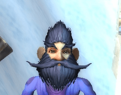 Gnome male Mage 60