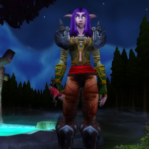 Night Elf female Hunter 70