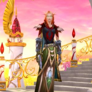 Blood Elf female Paladin 70
